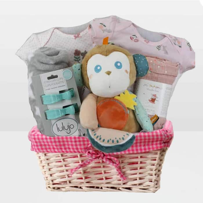 Monkey Girl Baby Gift Basket