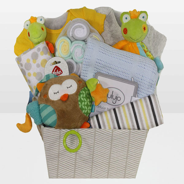 Neutral Baby Fun Basket<BR>Carters Onesie 100% Cotton, Carters Onesie 100% Cotton, Musical Owl Plush Toy, Frog Plush Toy, Frog Rattle, Lollipop Wash Cloth and More - Baby Gifties