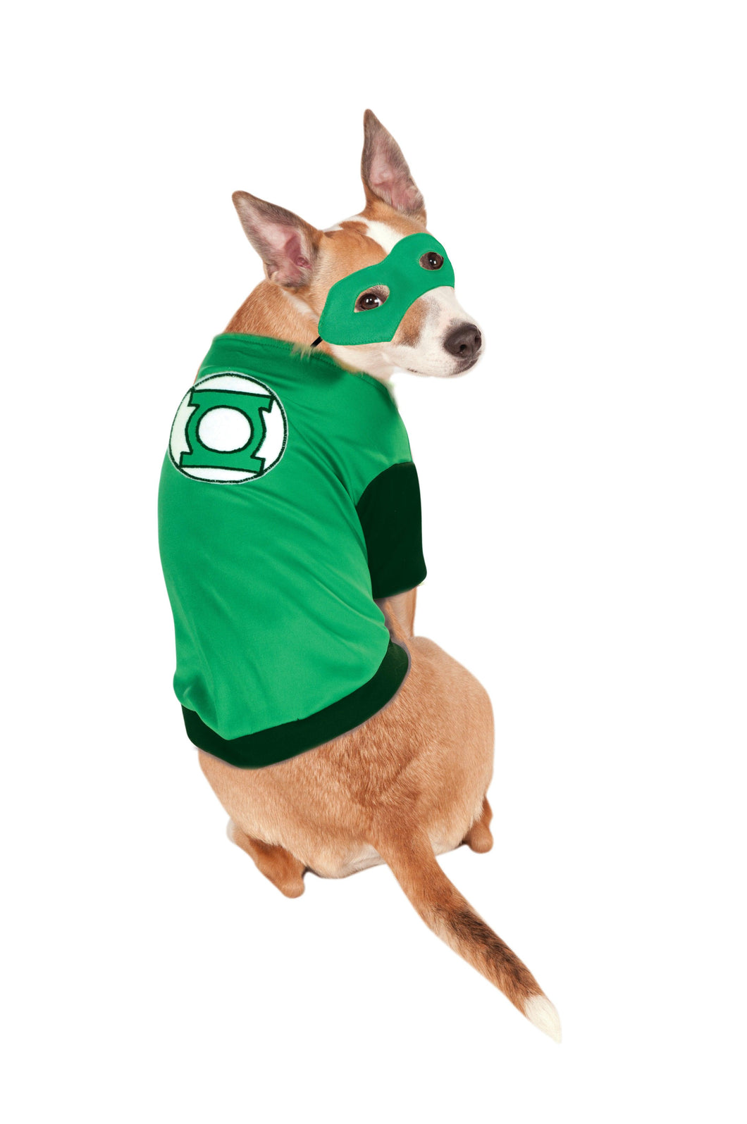 Pet - Green Lantern Costume