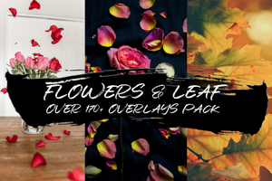 FLOWERS & LEAFS - OVER 170+ OVERLAYS PACK - Astro Panel