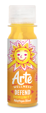 Load image into Gallery viewer, Arte Wellness DEFEND Immunity Adaptogen Blend: Immunity = Turmeric + Ginger + Magnesium + Black Peppers + Zinc with Adaptogens (6 Bottles per Case)