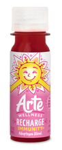 Load image into Gallery viewer, Arte Wellness RECHARGE Immunity Adaptogen Blend: Immunity = Ginger + Ginseng + Elderberry + Turmeric + Magnesium with Adaptogens (6 Bottles per Case)