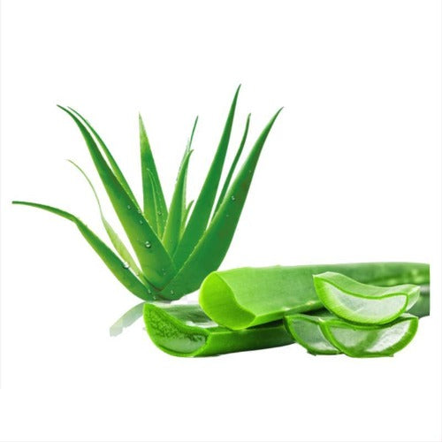 ALOE VERA LIQUID 1:1 (Aloe barbadensis) 100 ml - eOil.co.za