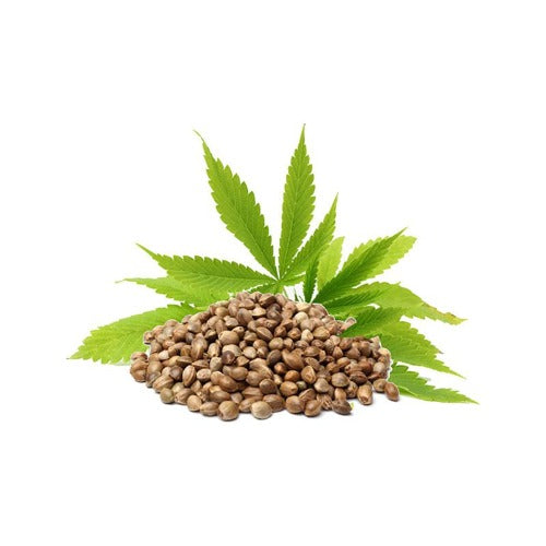 Hemp seed oil 100 ml