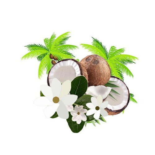 eOil.co.za macerated carrier oil monoi tiare gardenia taitensis tahitensis monoi de tiare 100 % pure Tahiti coconut extra virgin carrier oil natural flower fragrance hair and body oil infused after sun