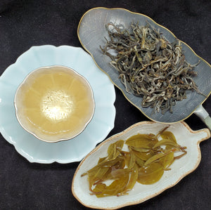 2020 Spring 1st Pick Yiwu Yi Bang Cat Ear Gushu Green Puerh Loose 1 oz