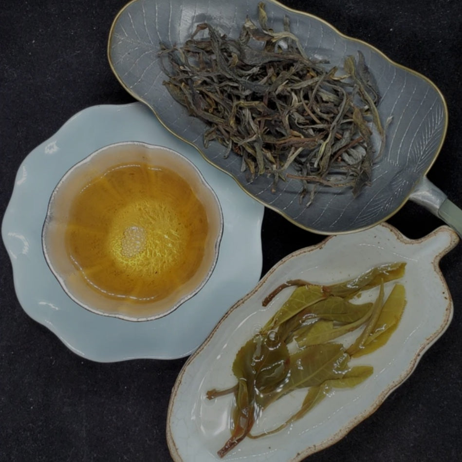 2020 Laos High Mountain Wild Forest Ancient Tree Green Puerh 3oz