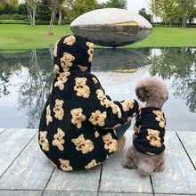Load image into Gallery viewer, Matching Velvet Teddy Bear Sweatshirt - HolliePaws