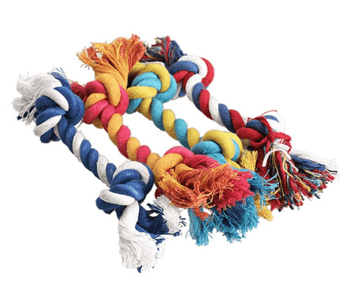 chew knot dog toy