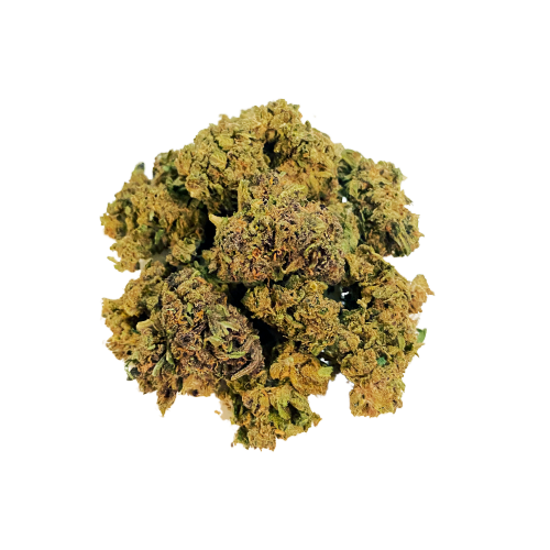 Gang Ish - CBD Cannabis Sativa Flower