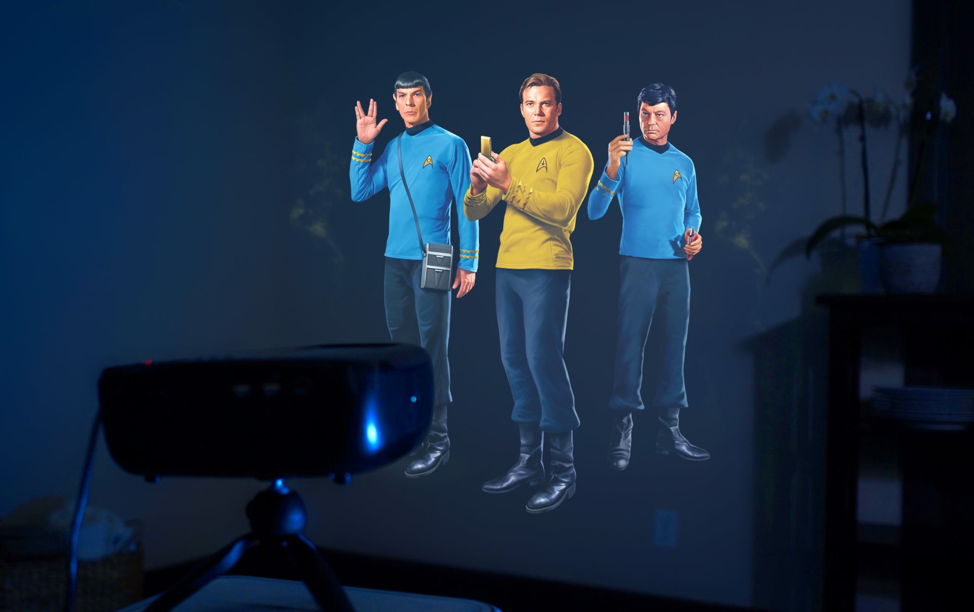Kirk, Bones, and Spock are on an away mission to your living room wall