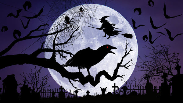 crow and flying witch silhouettes in front of a full moon