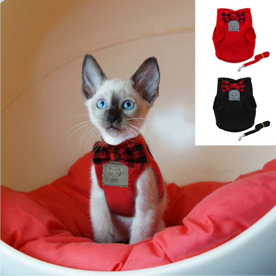 Mesh Bow Tie Cat Harness Set - giftsforrpets