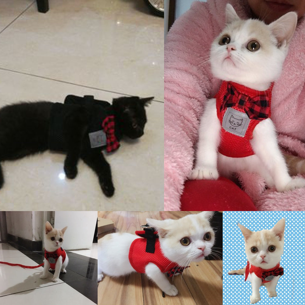 Mesh Bow tie Cat Harness and Leash For Small Cats - giftsforrpets