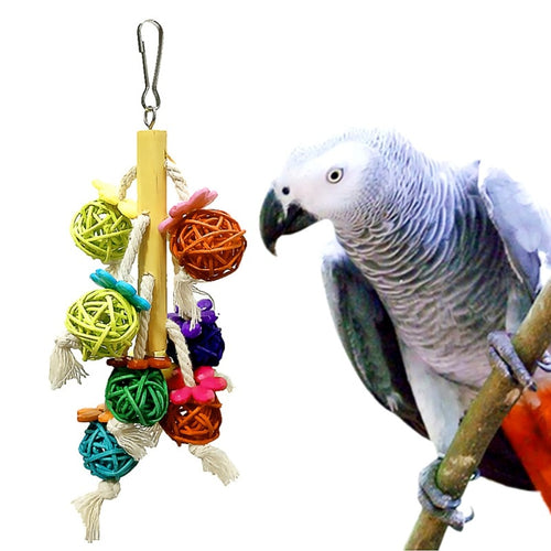 Parrot Chewing Toy - giftsforrpets