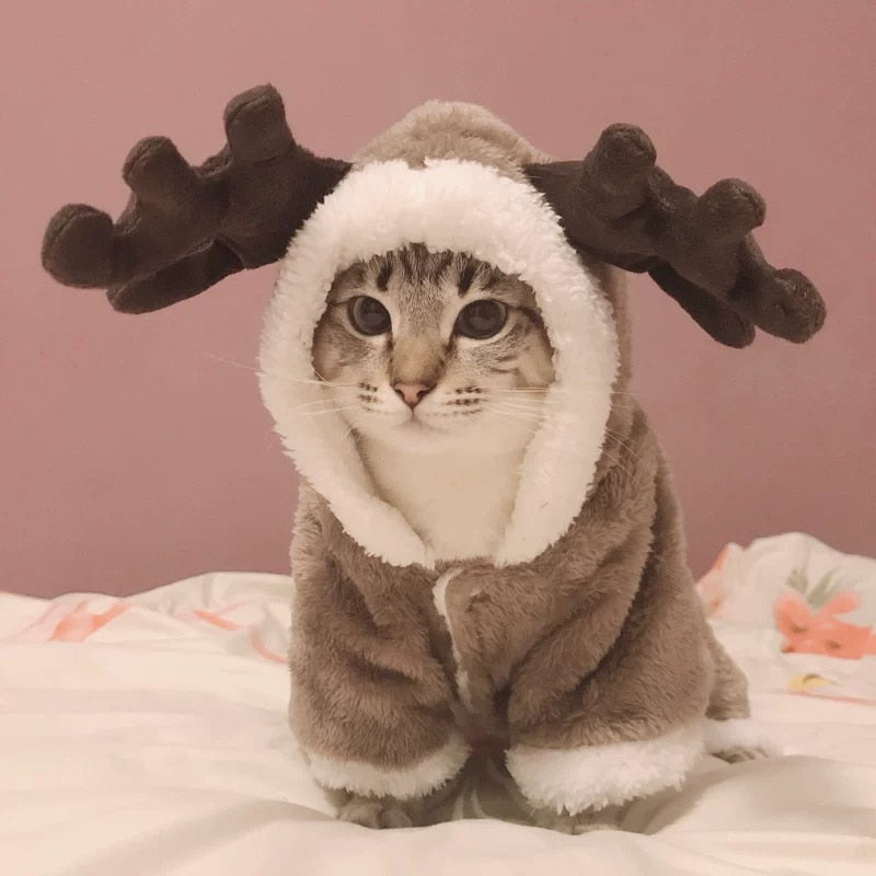 Cat Warm Elk Christmas Costume/jacket - giftsforrpets