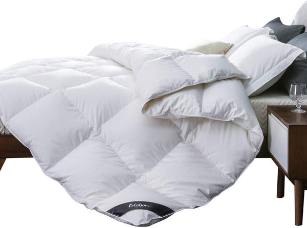 Globon White Goose Down Comforter Queen Medium Warmth All Season, 400 Thread Count Hypoallergenic 100% Cotton Shell, with Corner Tabs, 25oz,700 Fill Power, Solid White