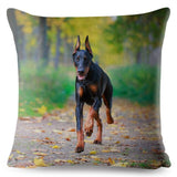 Wisdom Germany Doberman Dog Print Throw Pillow Cover 45*45 Square Cushion Cover Linen Pillow Case Sofa Home Decor Pillows Cases