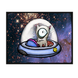 Catopus Spaceship - Collect all 12