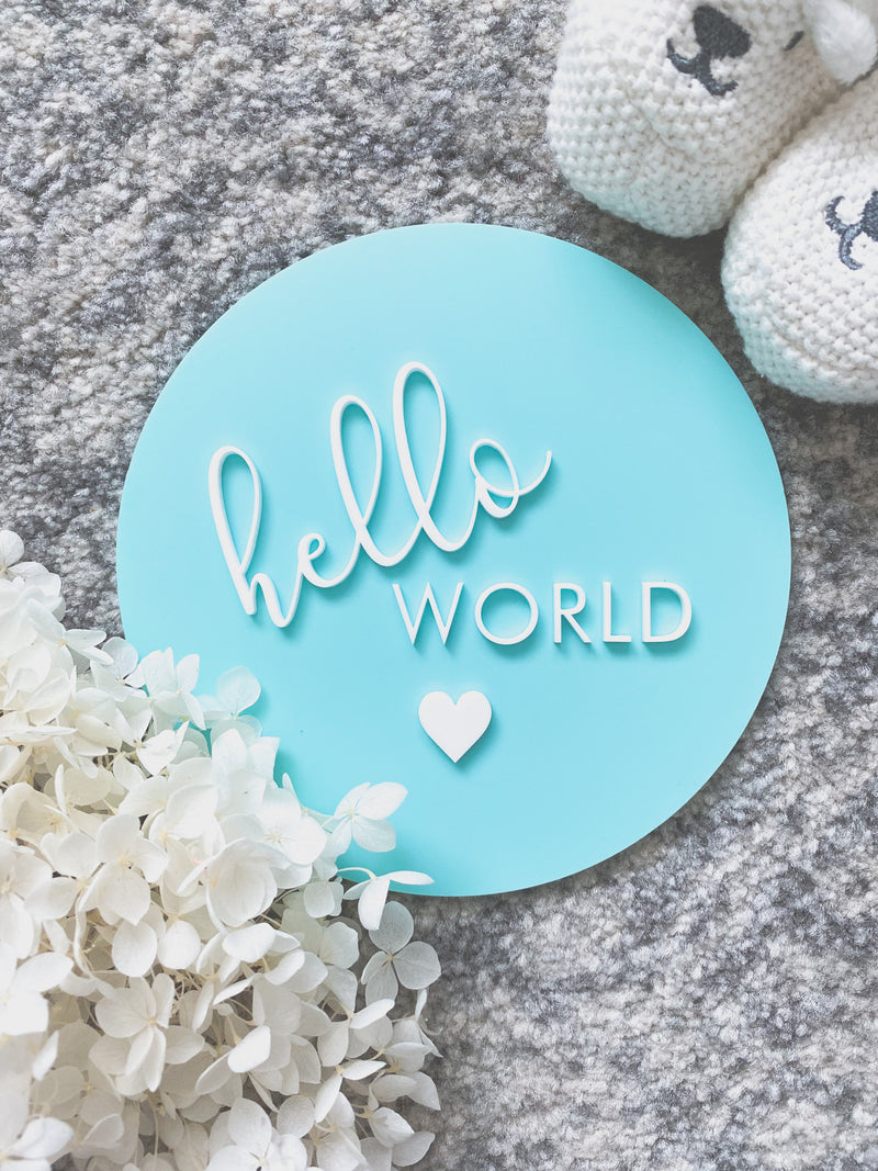 """hello world"" with heart birth announcement plaque"
