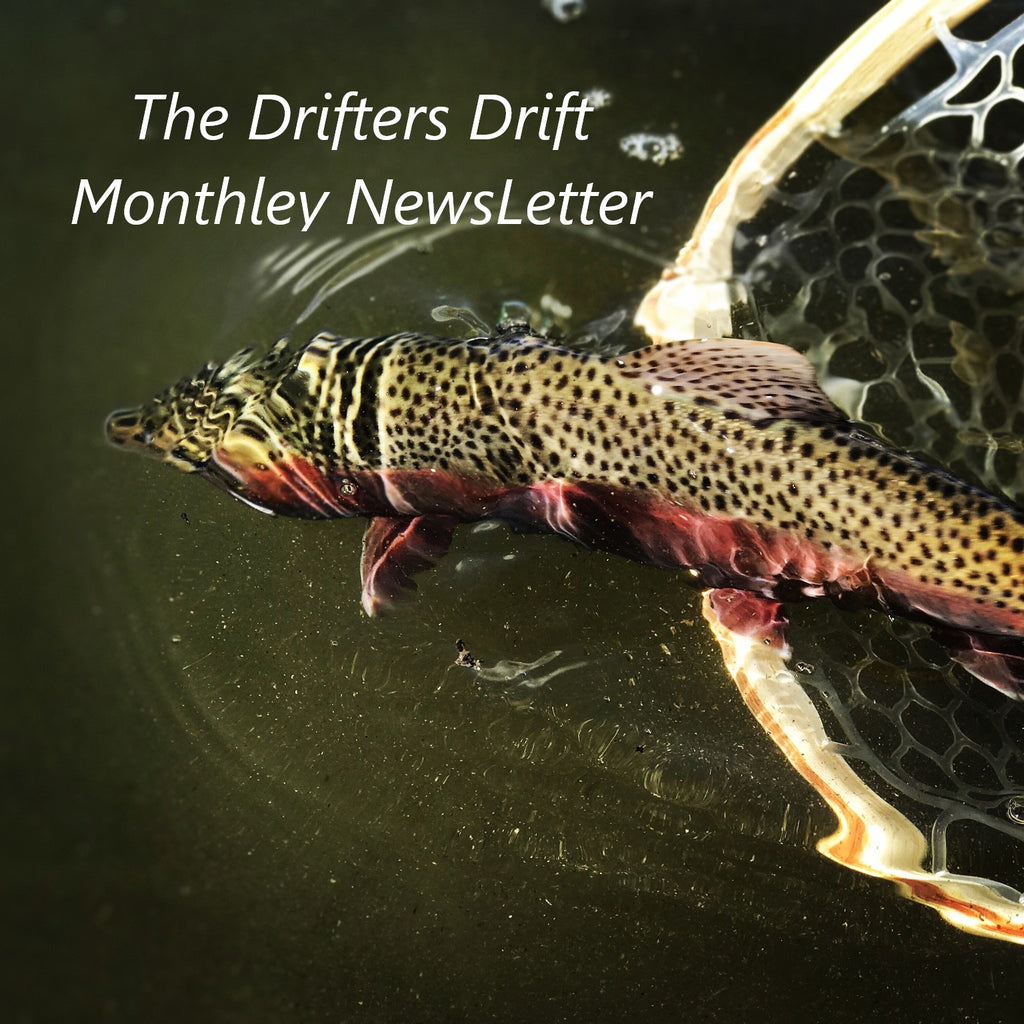 Drifters Drift - November 2020 Newsletter