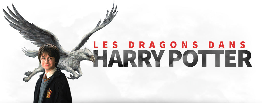 Les Dragons dans Harry Potter