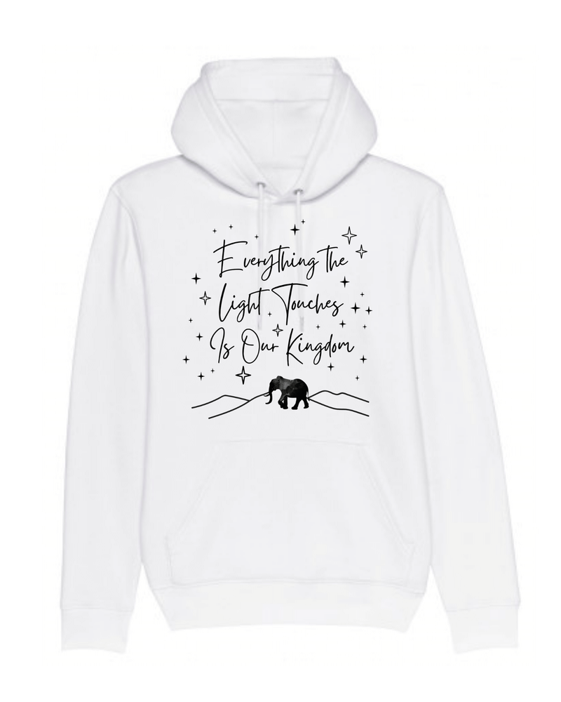 Everything the Light Touches Hoodie (Unisex)