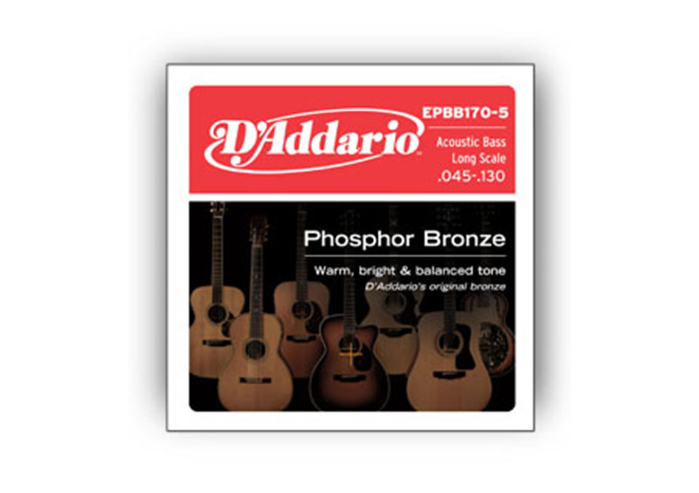 D'Addario Phosphor Bronze Wound Acoustic Bass Strings - Music Corner North