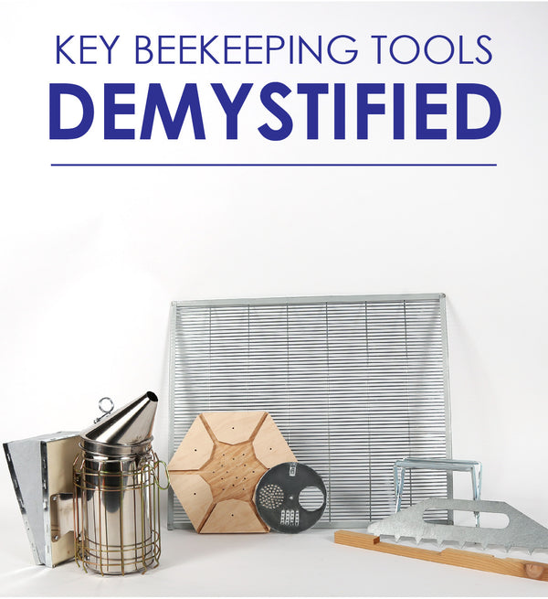 Key Beekeeping Tools Demystified