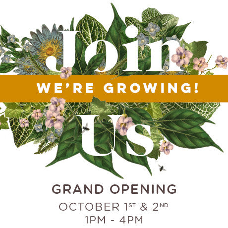 We're Growing! Join Us for Our Grand Opening