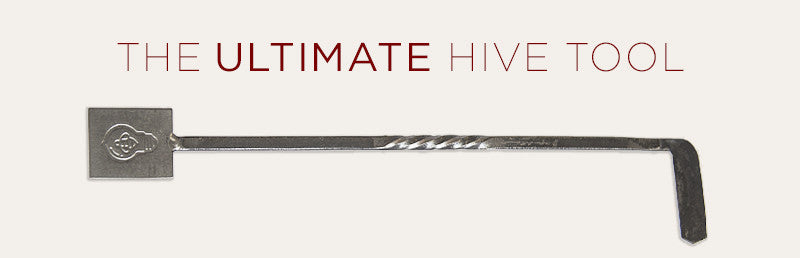 Product Spotlight: The Ultimate Hive Tool