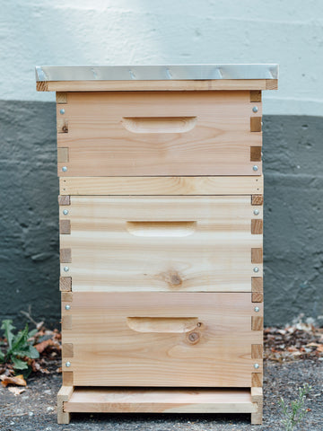 Langstroth hive with bee escape board set up