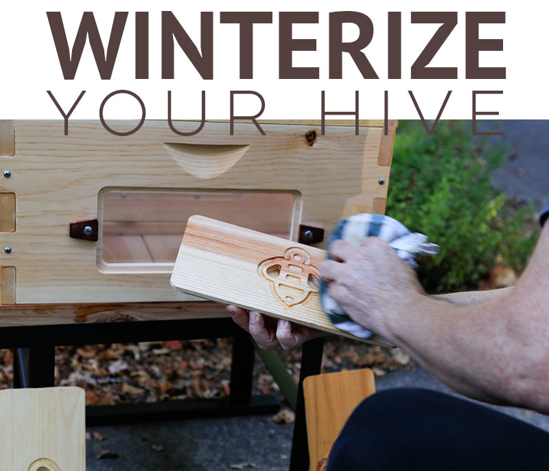 Winterize your hive