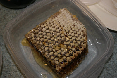 Freshly cut honeycomb from beehive