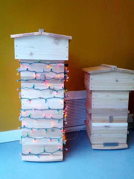 Warre Beehive with stringed holiday lights