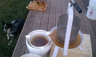 Honey straining system with strainer and bucket