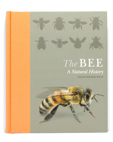 a bee the natural history book
