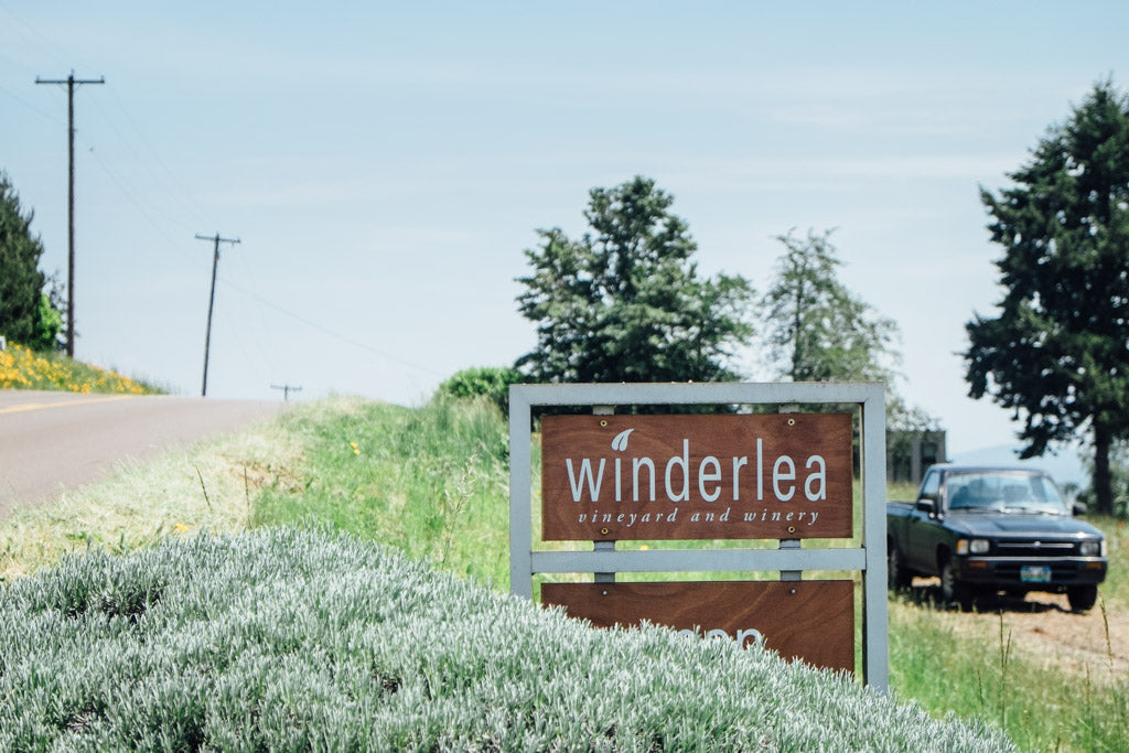 Winderlea bee thinking blog front sign