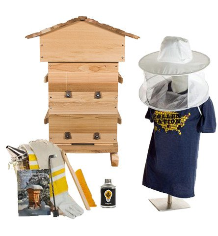 Cedar Warre hive starter kit with hat veil