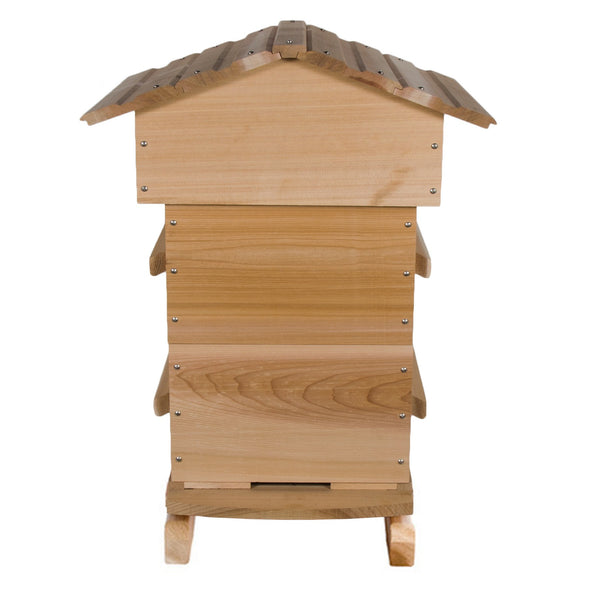 Warre hive without windows
