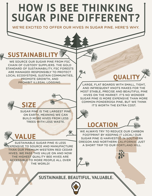 Why sugar pine for hives?