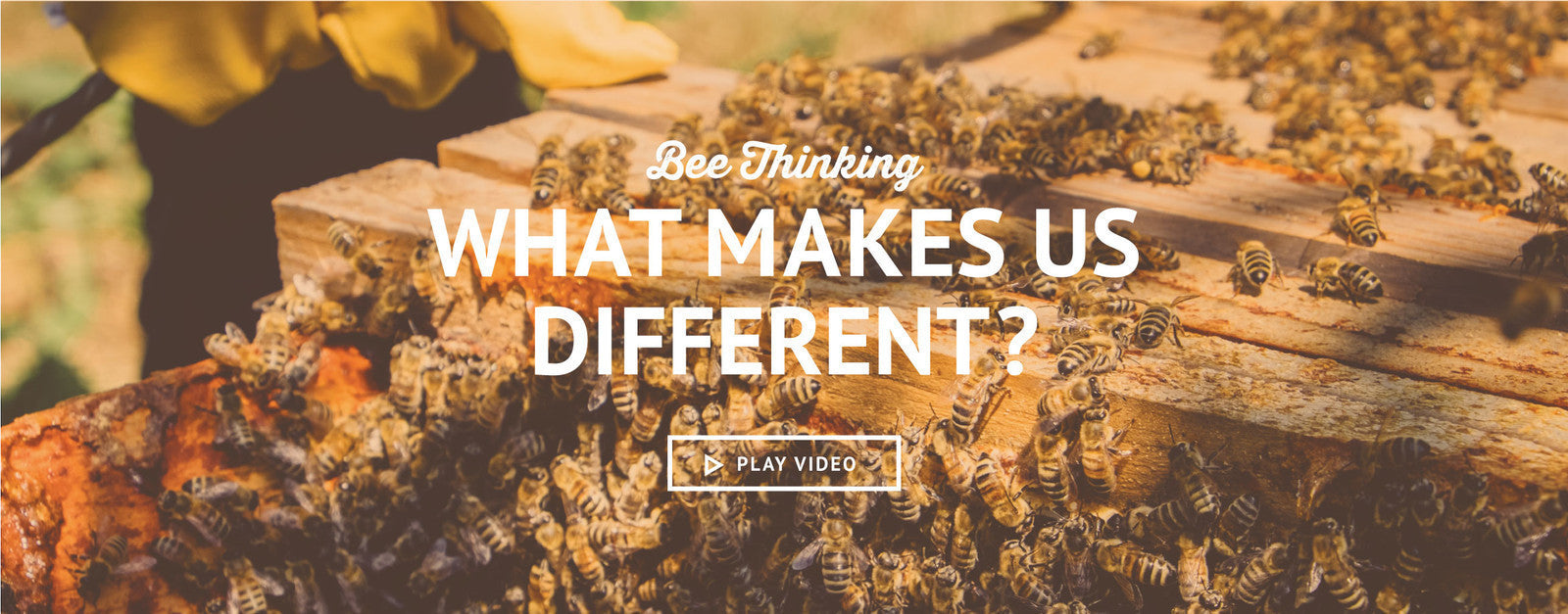 what makes bee thinking different