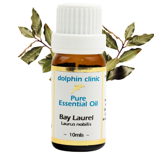 BAY LAUREL PURE ESSENTIAL OIL 10ML