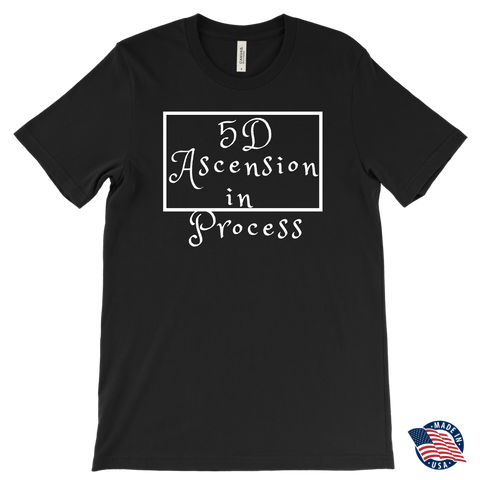 5D Ascension Men's T-shirt