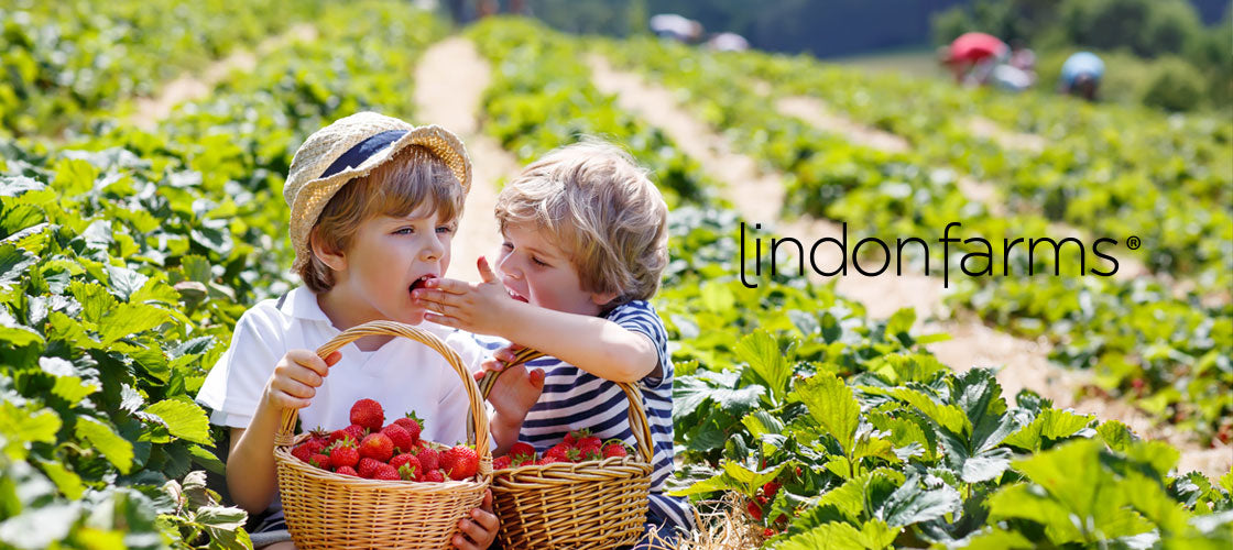 Lindon Farms ...great product at great prices ...