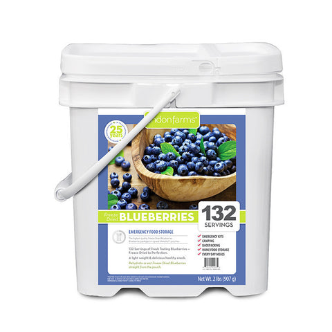 Freeze Dried Blueberries Food Storage (132 Servings)