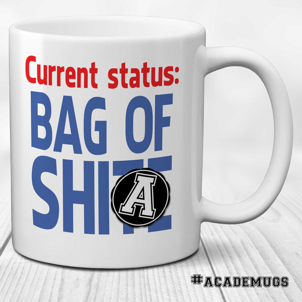 Current Status Bag of Shite Mug