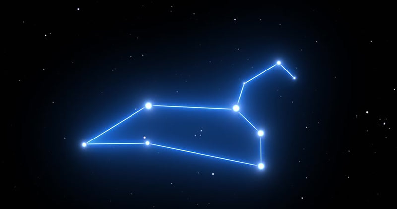 Constellation Du Lion