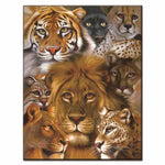Poster Animaux 1 Piece