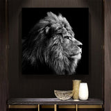 Poster Lion Monochrome